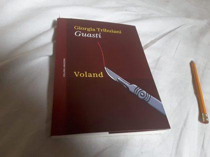 Consiglio di lettura n. 7 – Guasti di Giorgia Tribuiani
